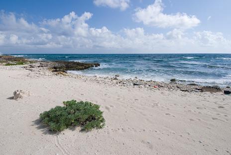 Ocean front Casa Cascadas Akumal Mexico vacation rental villa