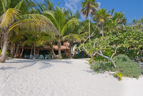 Sandy beach and palm trees at Casa Cielo Akumal Sur