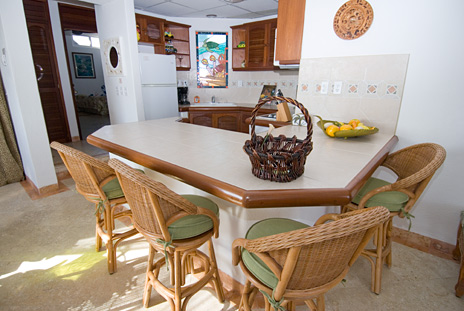 Kitchen  of Playa Caribe #12 akumal vacation rental condo