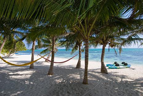 At Casa Rosa vacation beach villa, coconut palms sway in the breeze, hammocks, sea kayaks; it's paradise