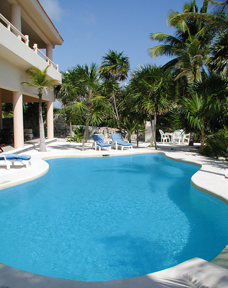 Free form swmming pool  at Yardena Soliman Bay Luxury Vacation Rental Villa